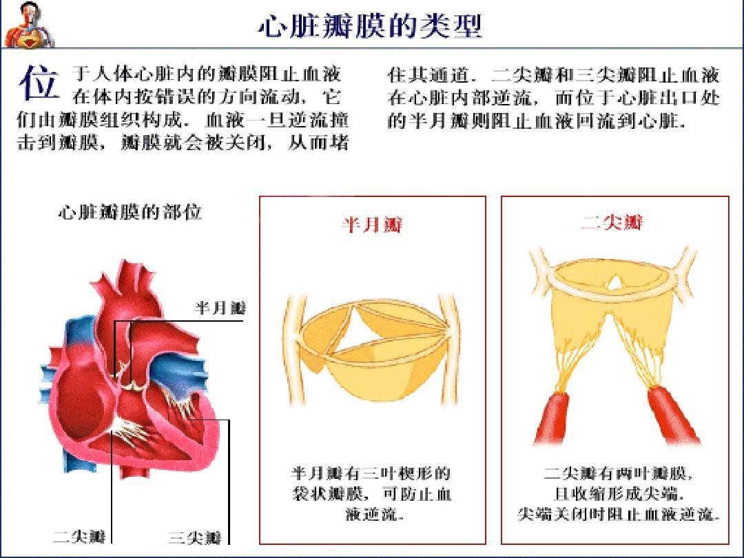 兰州或者全国哪个医院做心脏瓣膜置换手术最好?北京阜外到底怎么样?