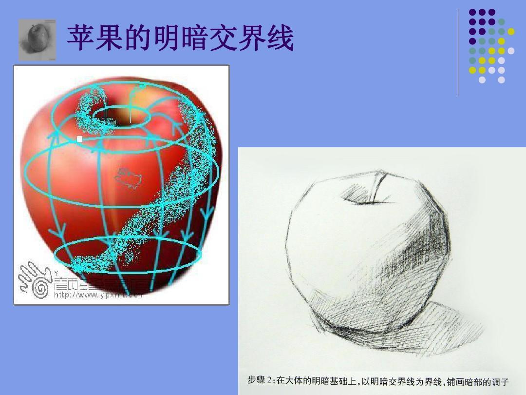素描静物中苹果绘画步骤ppt图片