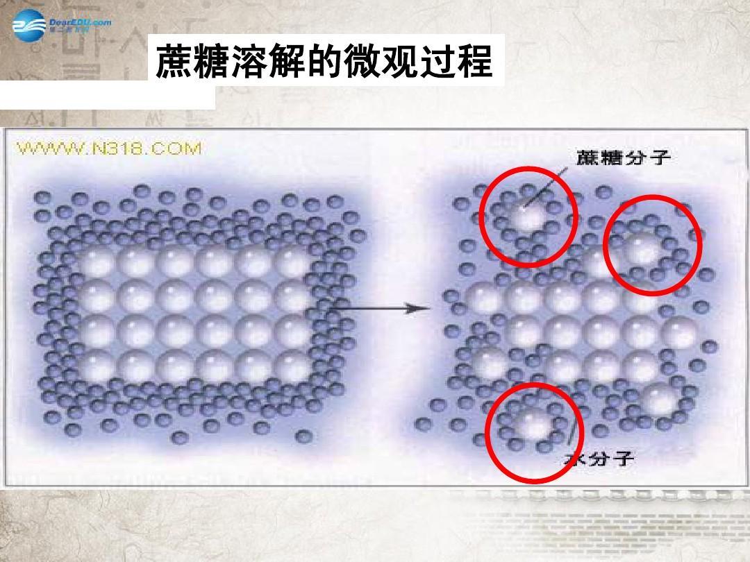 蔗糖溶解的微观过程