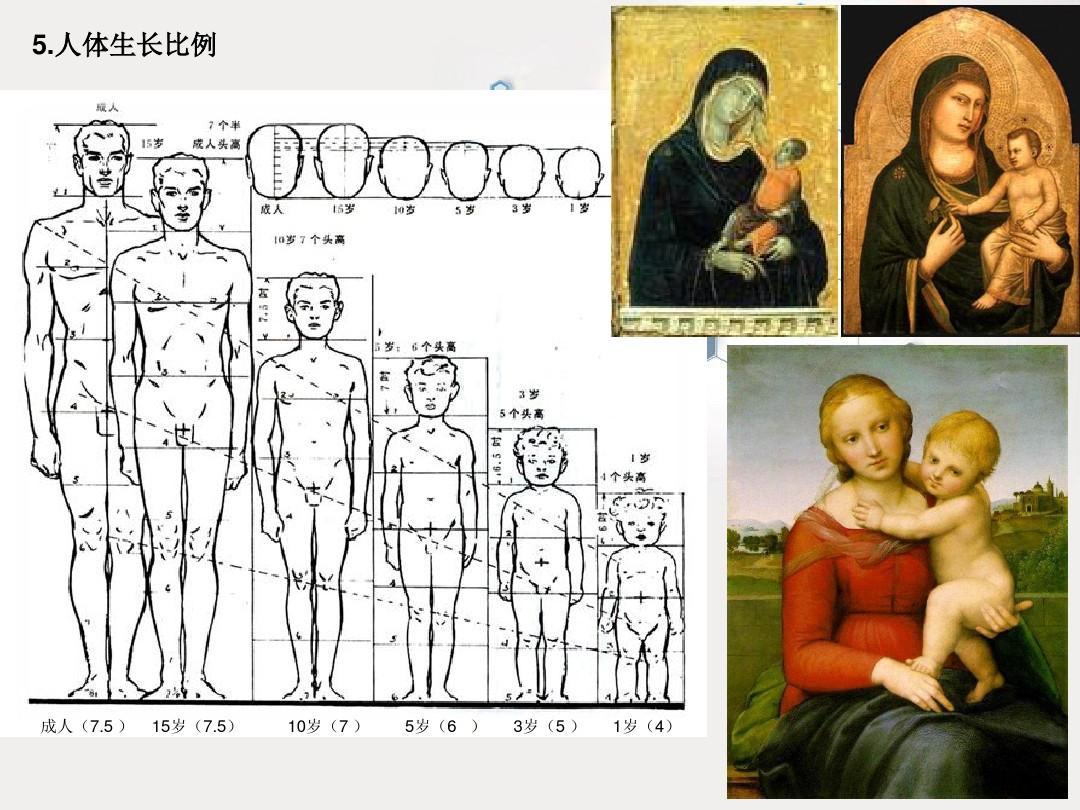 人体比例_速写人体比例结构课件——任课教师:任得智ppt