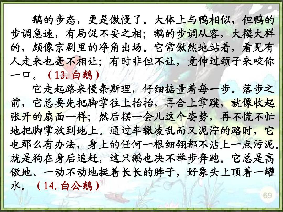 人教版四年级语文上册14.白公鹅(精品课件)ppt
