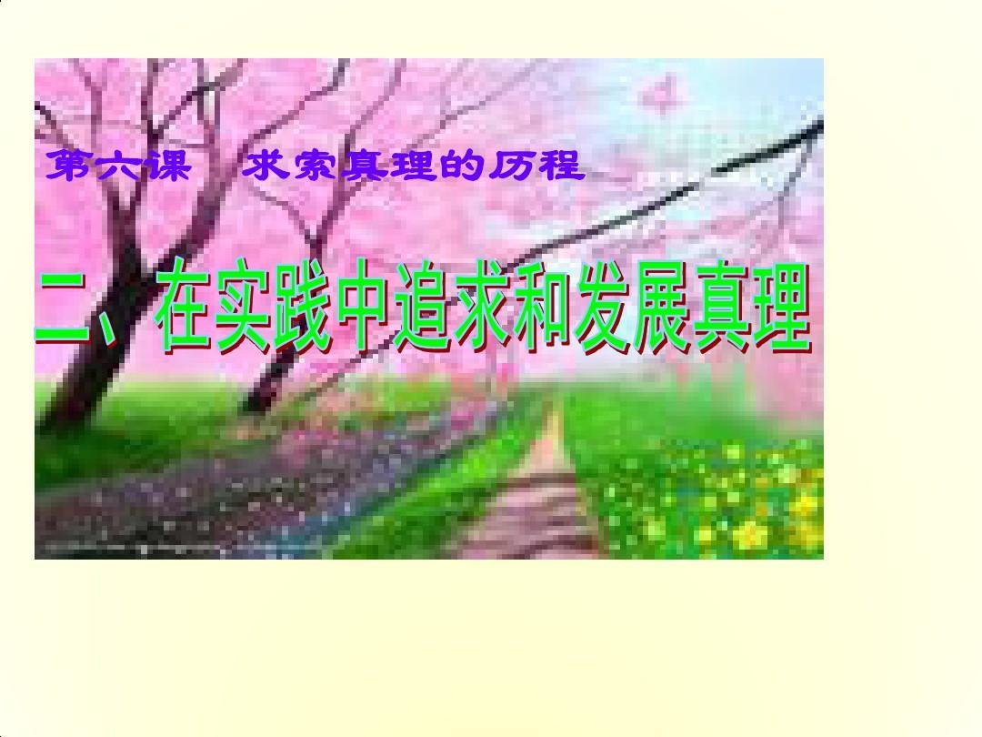 高二政治课件:6.2《在实践中追求和发展真理》(新人教版必修4)