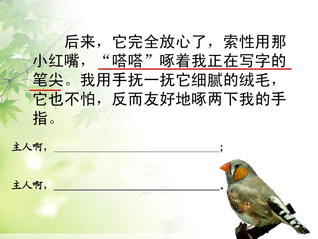语文网所有汇报小学教育年级四教案课件苏教版四上21珍珠鸟文档幼儿园英语优秀分类课语文图片