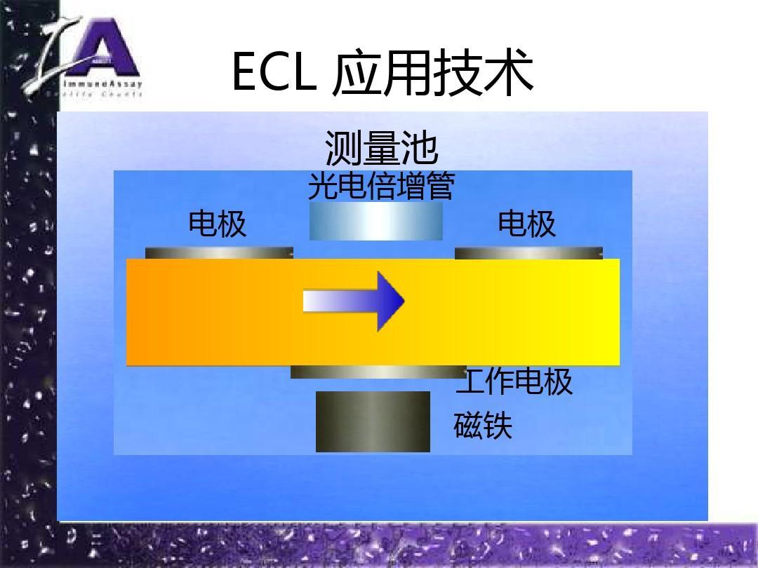 电化学发光与化学发光原理有什么区别