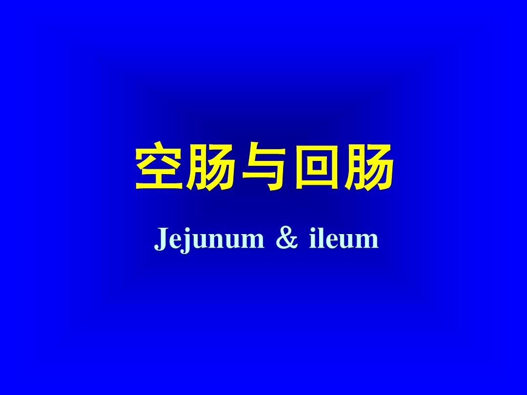 亚洲色囹��il�!깢�y`m���_空肠回与肠 ejjunum &il ue m