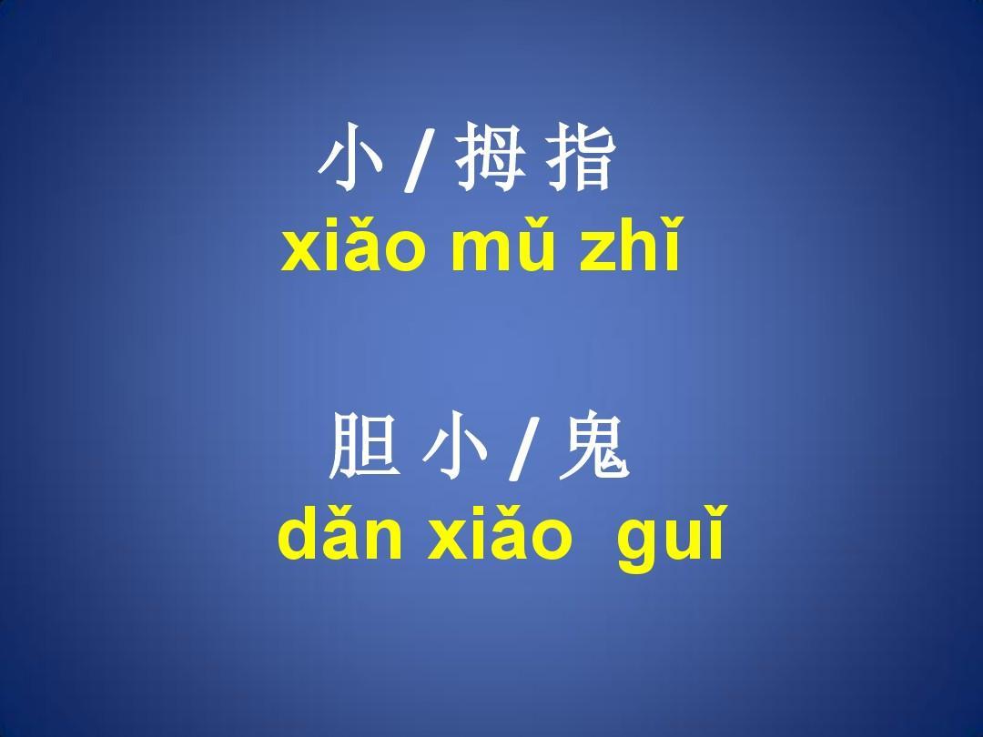 对外汉语教学:(拼音)第三声的变调复习答案PPT