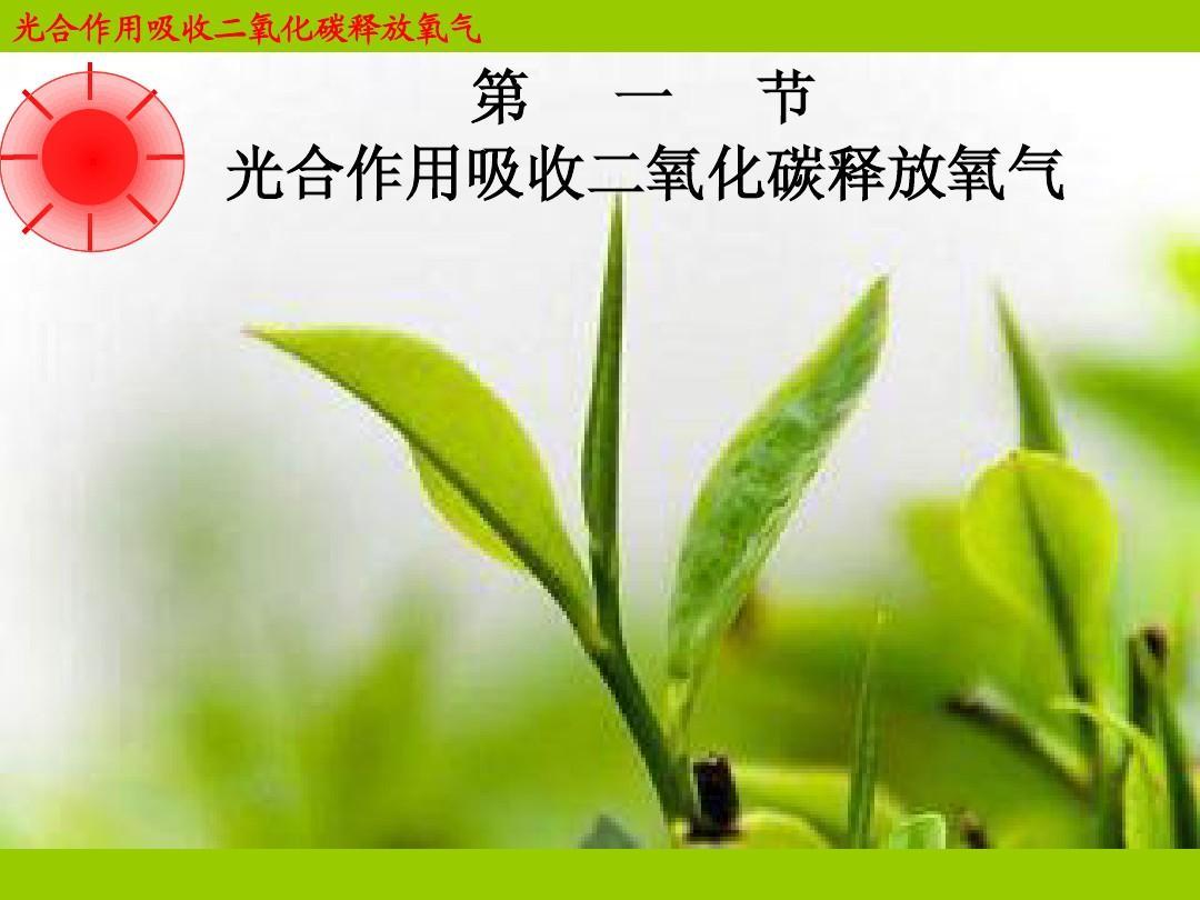 绿化好处多_绿化效果图_立体绿化