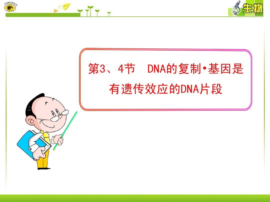 第3、4节  DNA的复制·基因是有遗传效应的DNA片段