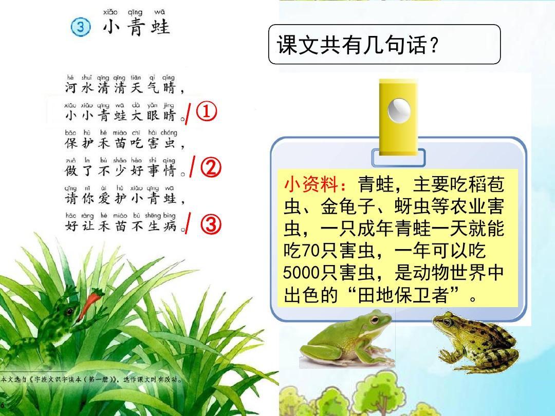 师导入新课:今天我们就一起来学习一篇新的课文——《小青蛙》(板书图片