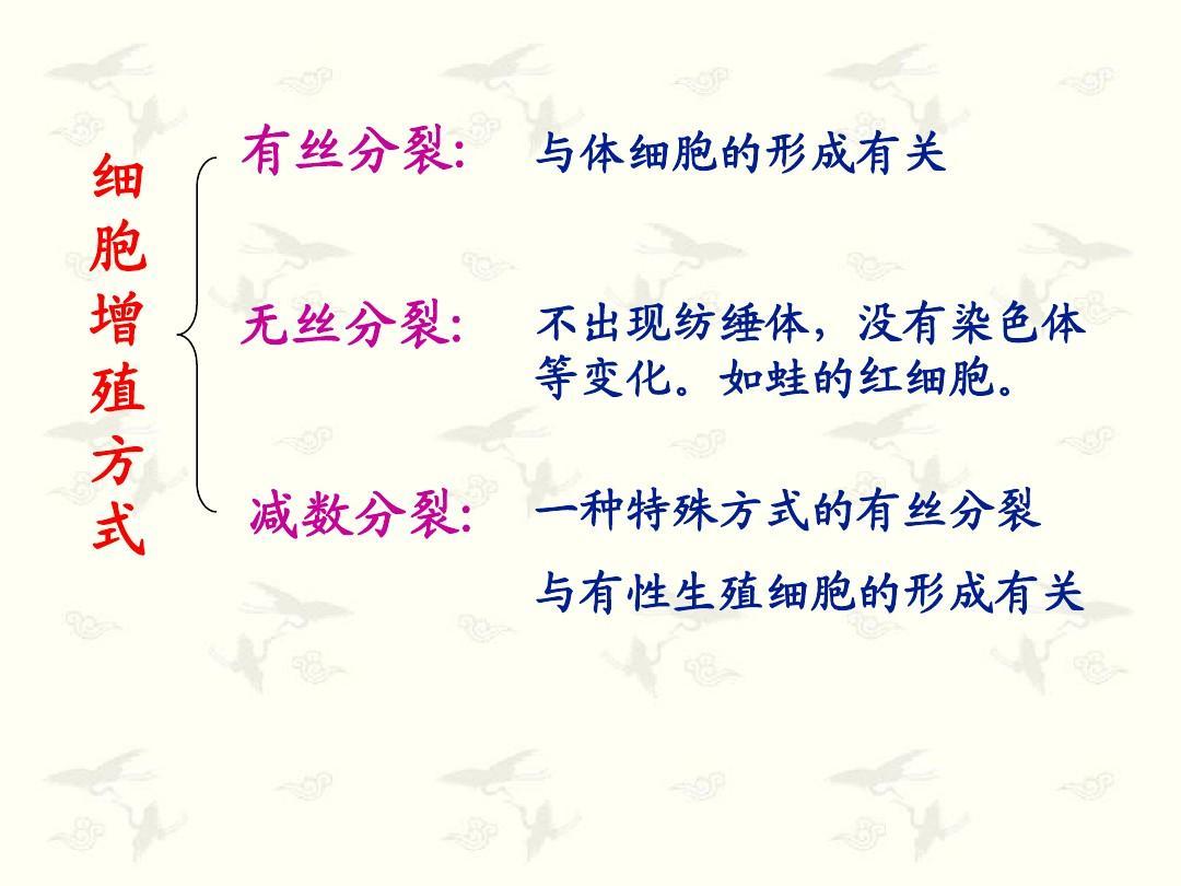 细胞形成和有性生殖减数的分裂课件1ppt资源管理器教案使用图片