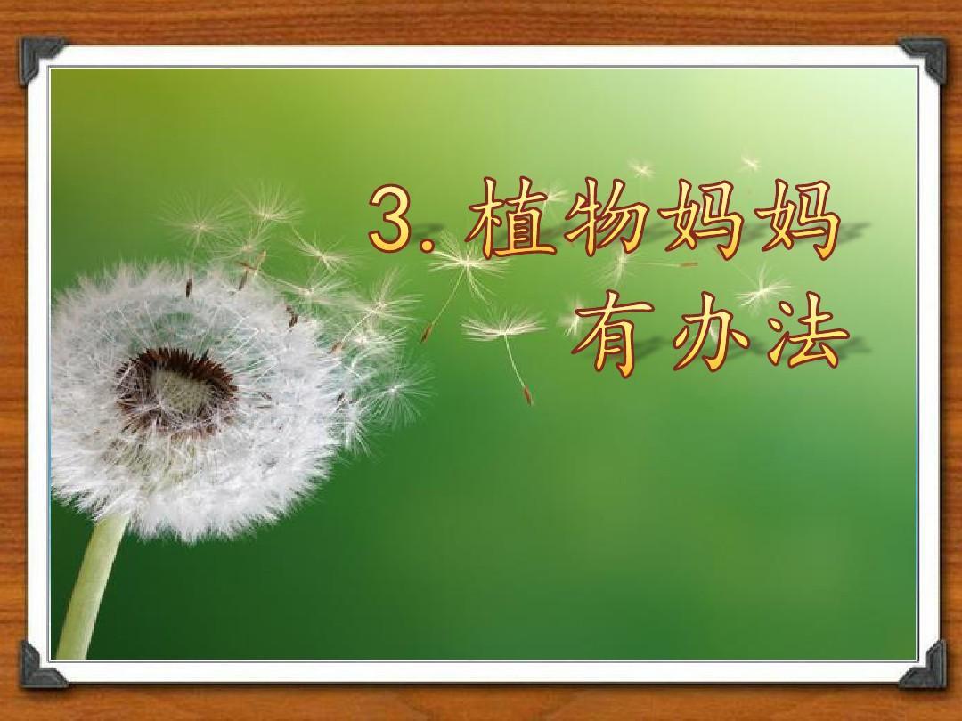办法课件有妈妈植物二上教学第3课第二课时p忆江南语文说课稿图片