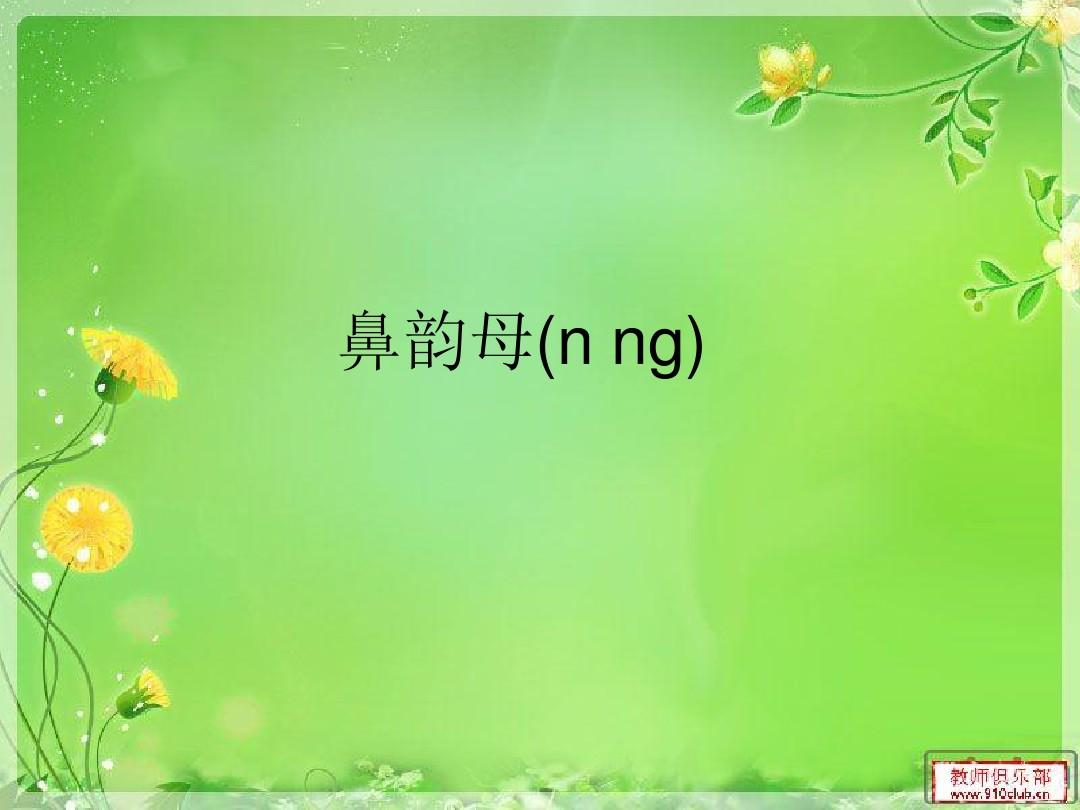 鼻韵母(n ng)