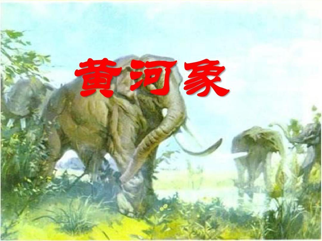 北师大小学五年级语文上册《黄河象》课件ppt