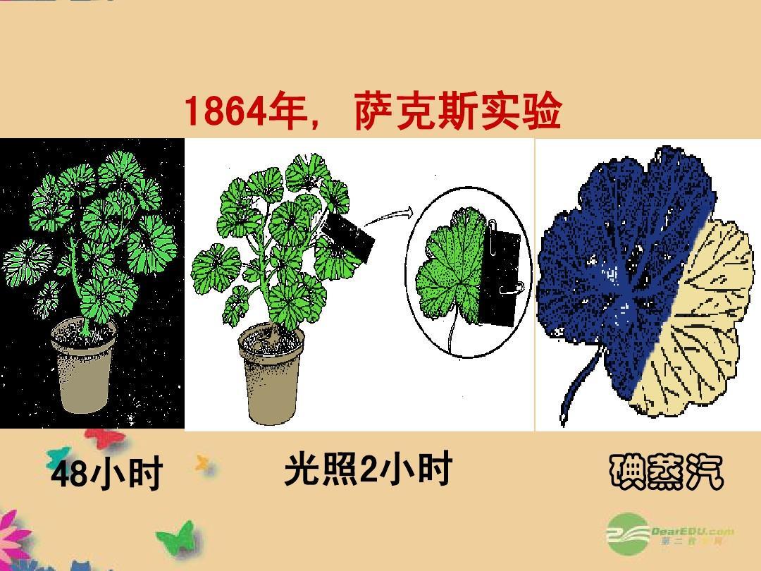 湖南师范大学推荐高中中学生物《量之源光与光合作用》课件新参考书附属高中图片