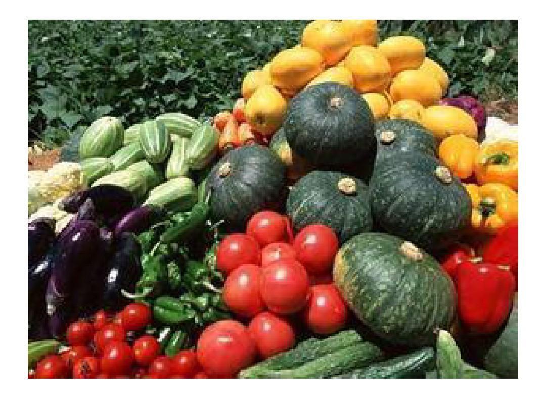 苏教版小学数学一年级数学上册实践活动:丰收的果园课件ppt图片
