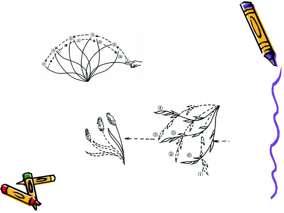 动画运动规律-曲线运动规律ppt图片