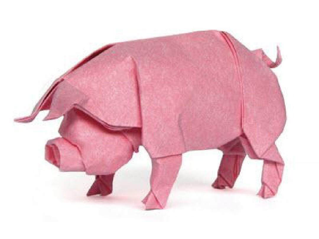 大班美术手工《折纸猪》PPT课件  幼儿园优秀优质课公开课名师比赛教案