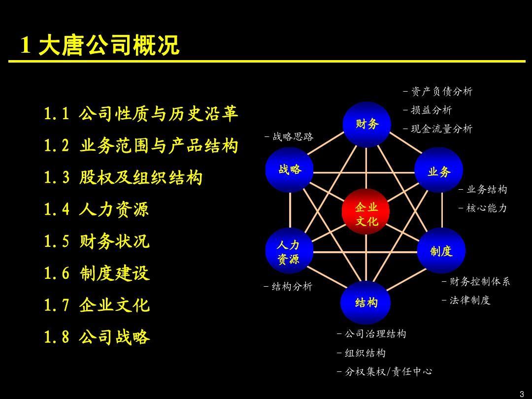大唐电子商业计划书终稿ppt