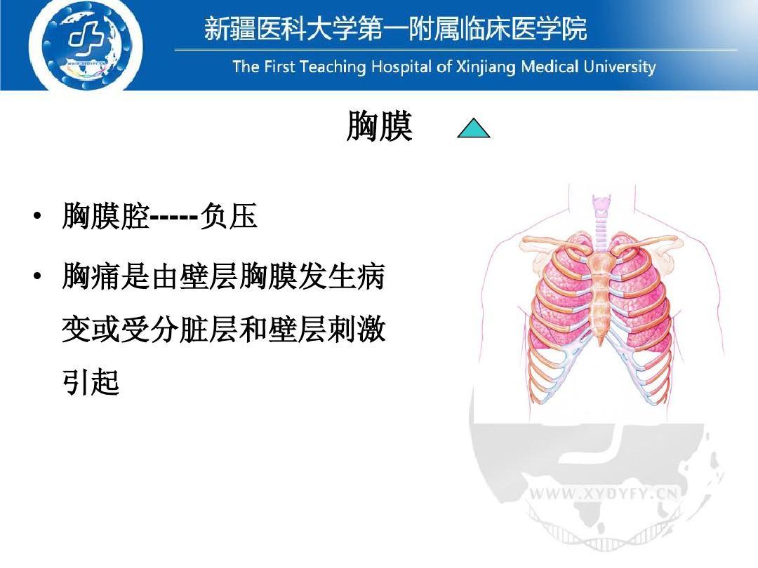 医药卫生基础医学呼吸系统常见疾病体征常见症状病人的v体征(本科班)英语备课托班图片