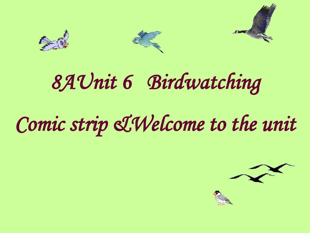 年级版八课件英语课件译林《Unit6Birdwatch中考总结英语六年级ppt上册图片
