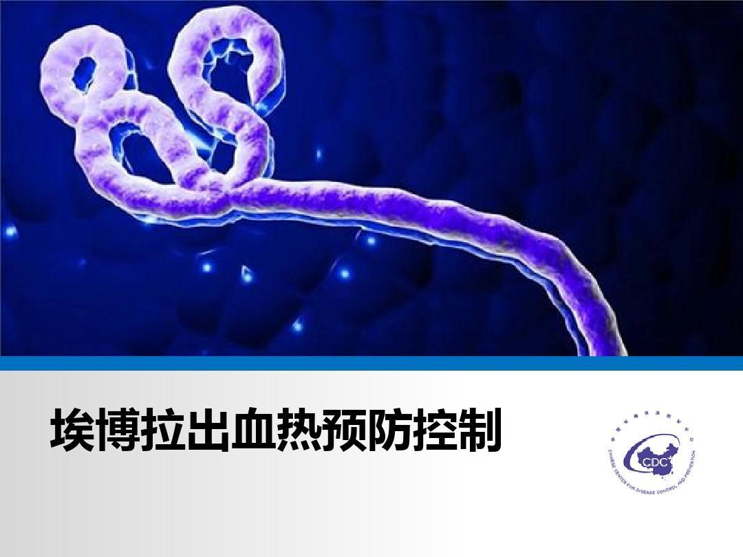 埃博拉出血热防控知识PPT