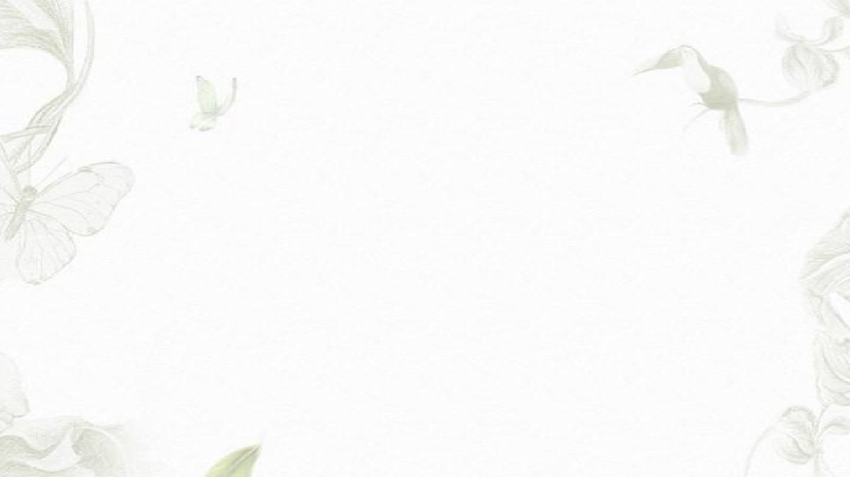 简约花卉唯美 精美框架式ppt模板