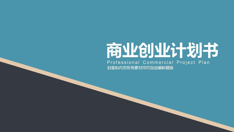 【商业创业计划书】严谨规范框架完整范本ppt图片
