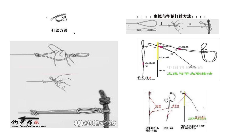 鱼竿和鱼线各种绑法图解ppt