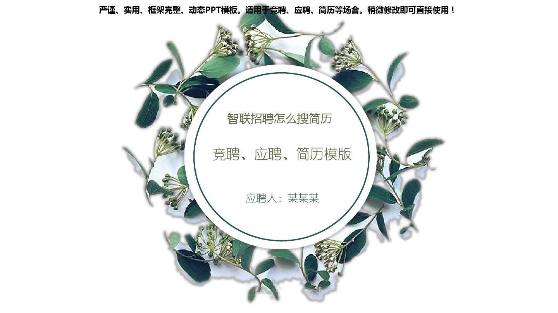 2018年度-智联招聘怎么搜简历【定制级别模版范文ppt】