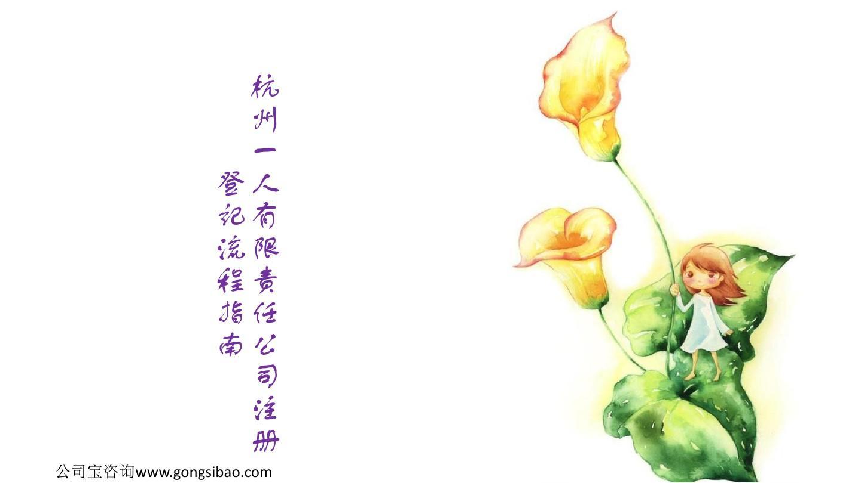 杭州一人有限责任公司注册登记流程指南
