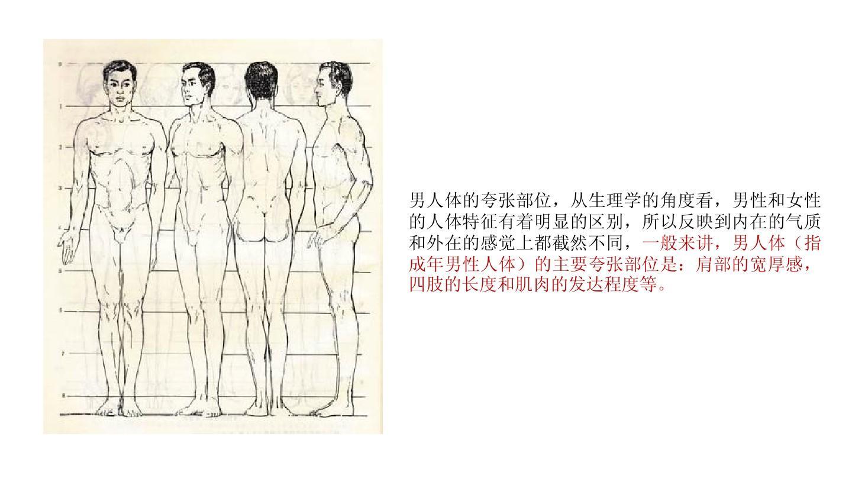 人体比例_服装技法--人体比例ppt
