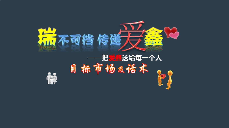 20151216085727768中国人寿瑞鑫典藏目标人群及话术ppt