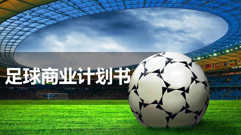 【推荐】足球商业计划书ppt案例