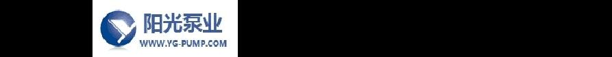 SFBX型液下泵型号及依据