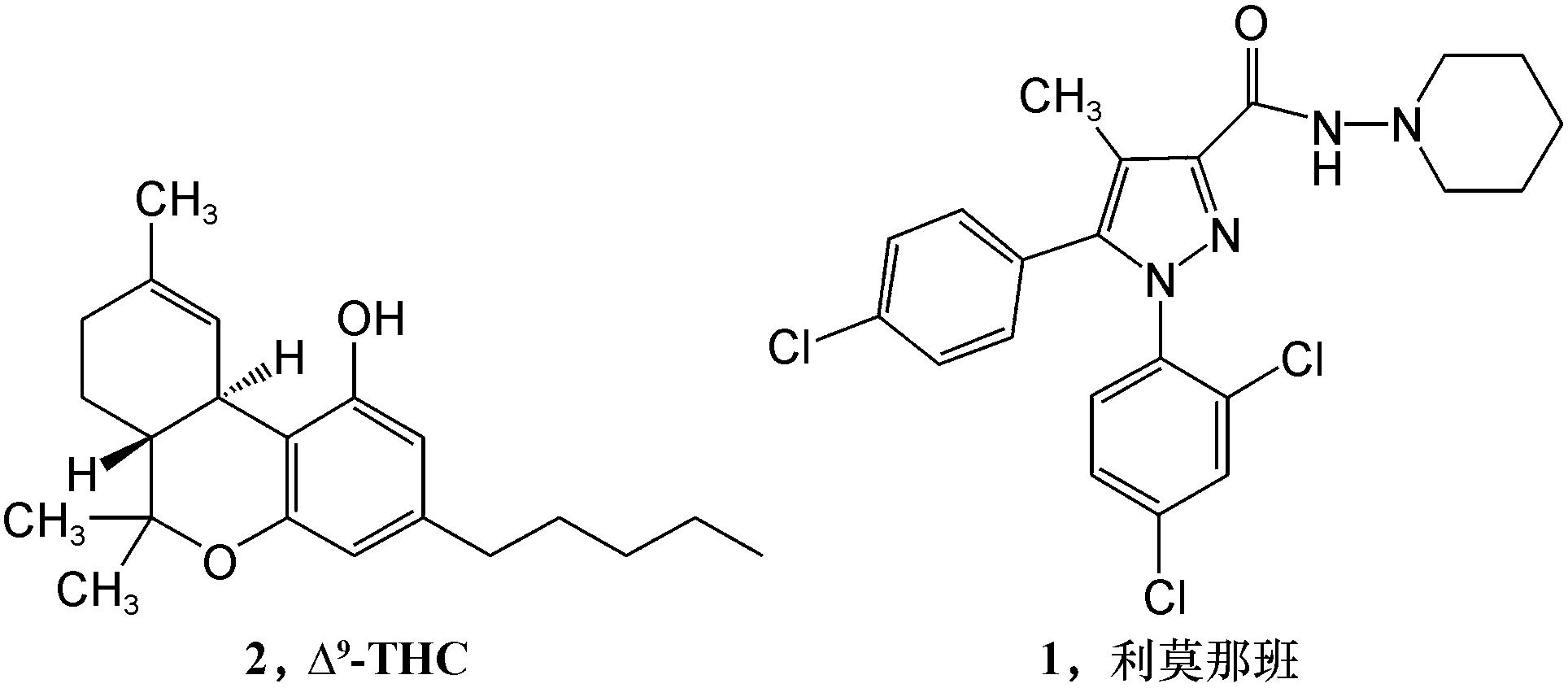 大麻受体1阻滞剂的构效关系研究进展