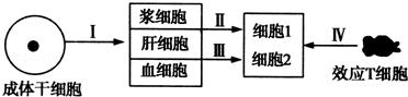 2019届山东省师大附中高考生物模拟试卷(九) Word版含解析