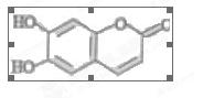 苏教版高中化学选修五上学期高二期末考试试卷答案