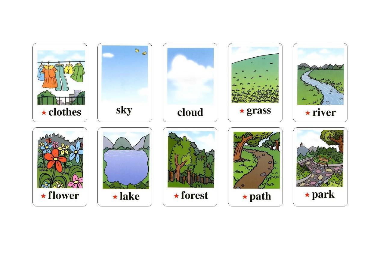 pep小学英语五年级上册单词卡片图片
