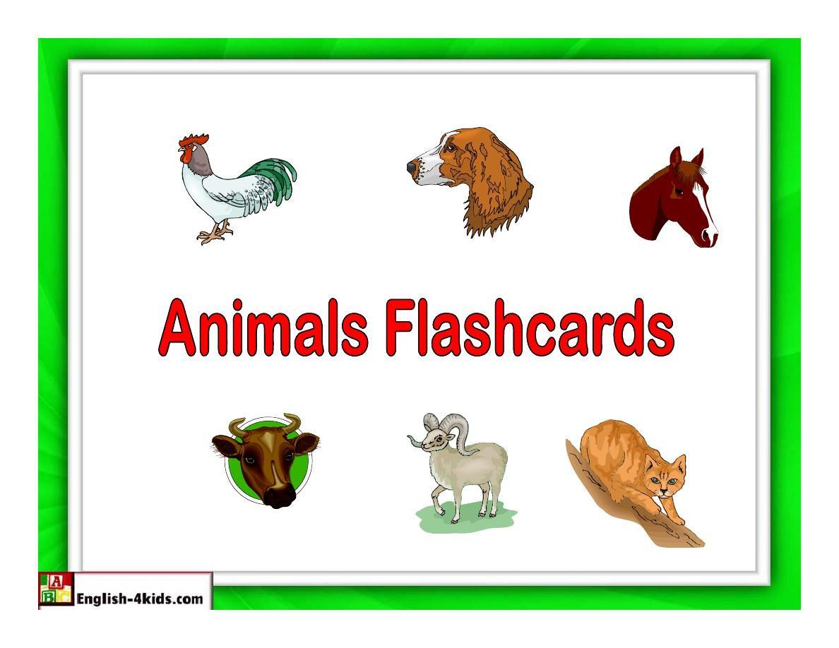 幼儿英语动物学习卡片