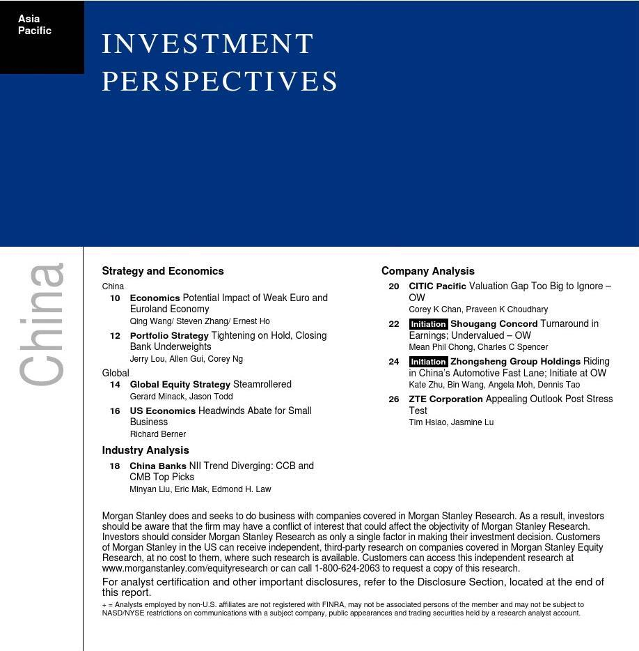 2010 Morgan Stanley-Investment Perspectives Ch