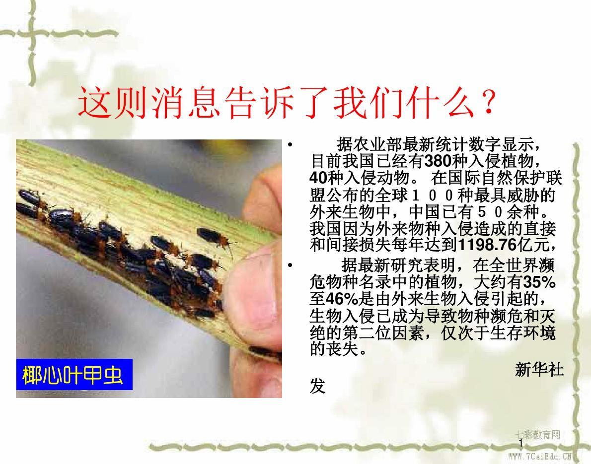 �Z文八年�上人教新�n�说�19�n《生物入侵者》�n件2.